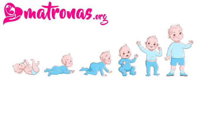 El crecimiento del bebé mes a mes – ¿Qué reglas aplican?